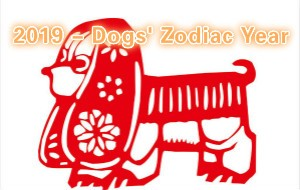 2019 - Dogs' Zodiac Year