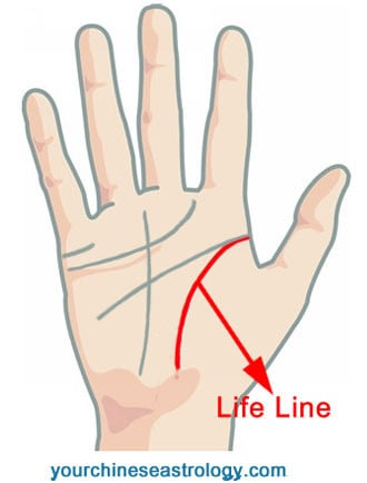 Palm Reading – Guide & Basics of Hand Reading to Tell