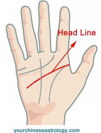 palm reading \u2013 guide \u0026 basics of hand reading to tell fortunepalm reading head line