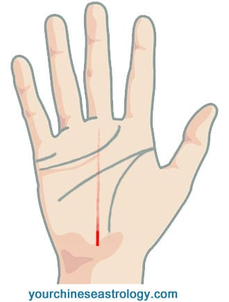 Fate Line, Career/Job Line, Luck Line Palmistry - Chinese