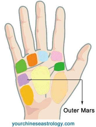 Palmistry Mounts and Meanings, How to Read Mounts of Hand