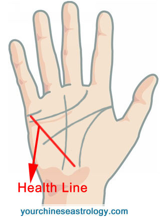 palmistry knowledge