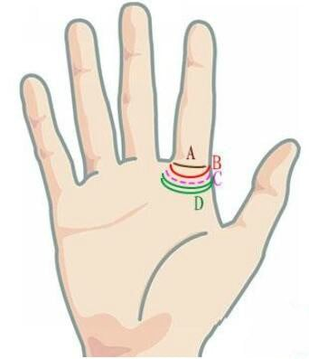 Ring of Solomon Palmistry, Ring of Jupiter Palm Reading