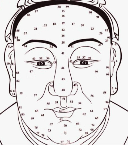 Face Reading, Free Chinese Physiognomy Techniques to Know Personality