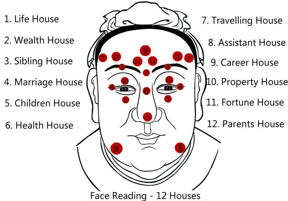 Face Reading, Free Chinese Physiognomy Techniques to Know