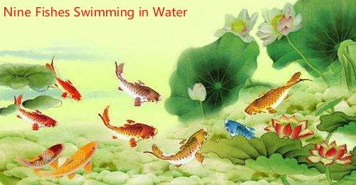 A Painting Of Fish Swimming In Water Is Also Good Choice Feng Shui Regarded As The Symbol Wealth While Has Auious Meaning